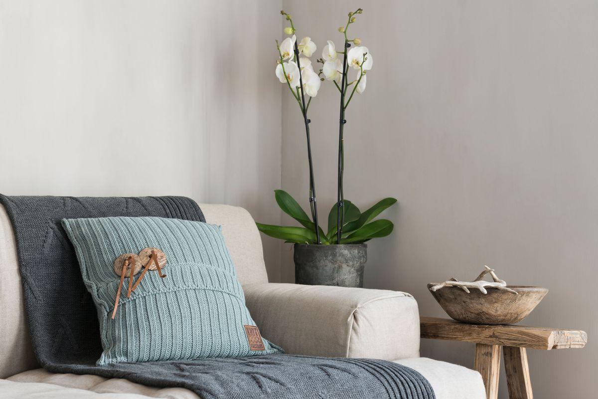 11012 knit factory kussen 50x50 1
